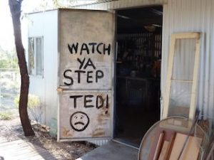 Teds Shed